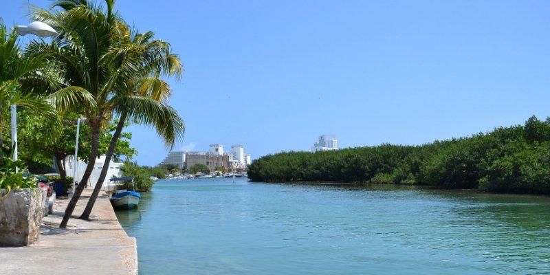 Cocodrilo ataca a turista de EU en Cancún