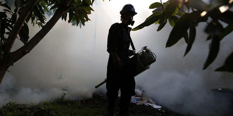 Confirma Singapur 258 casos de zika
