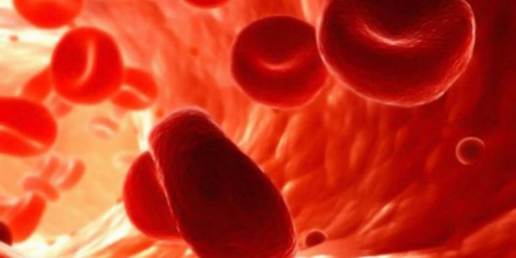 Células cancerosas dialogan a través de la sangre: científicos 1