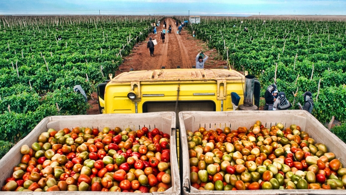 Villalobos aboga por agricultura sustentable en beneficio de comunidades 1