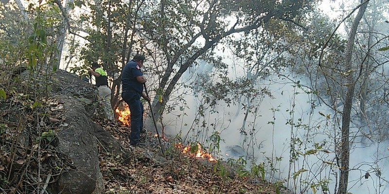 Dejó arder un día completo el incendio forestal en Acapulco, admite PC