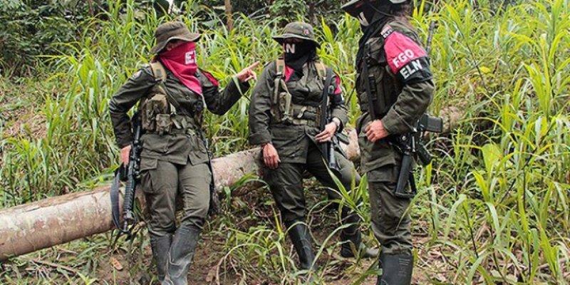 Mueren ocho guerrilleros colombianos en enfrentamiento con militares