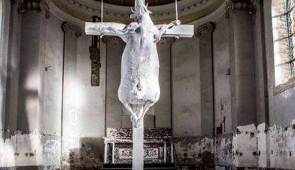 Crucifican vaca