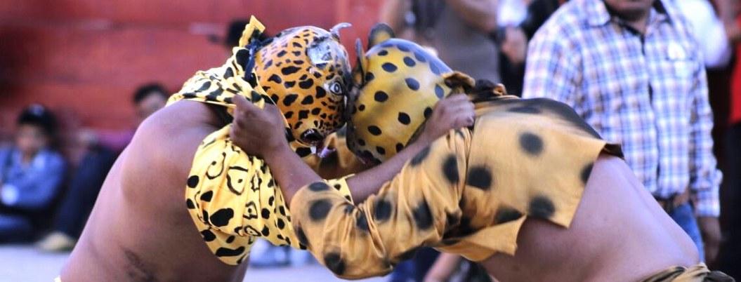 Pelea de tigres en Zitlala se hace por primera vez sin público 1