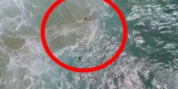 Rescatan a surfistas