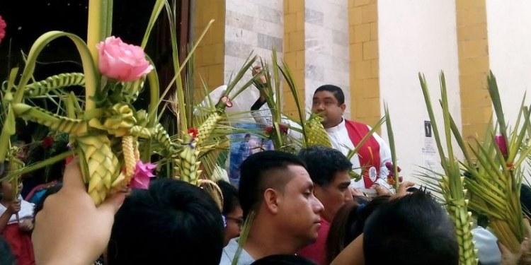 Tradición familiar, la fabricación de palmitas para el Domingo de Ramos 1
