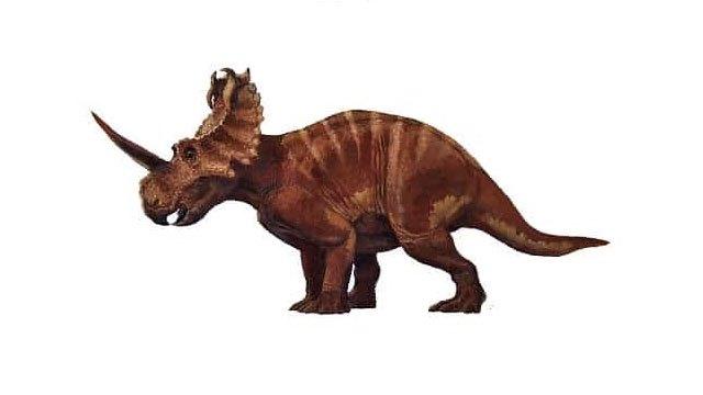 ¿Qué especies de dinosaurios habitaron en México? 16