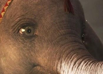 """Mira el nuevo tráiler de """"Dumbo"""" que te hará llorar 1"""