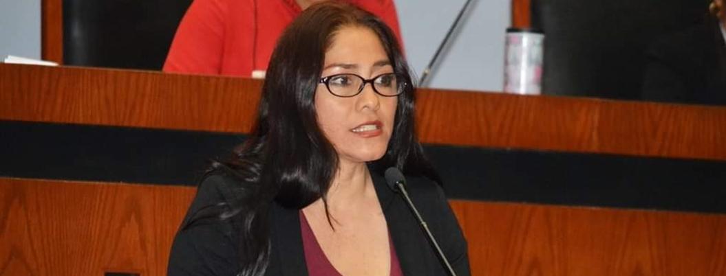 Anuncian foros regionales para agenda legislativa de Equidad de Género