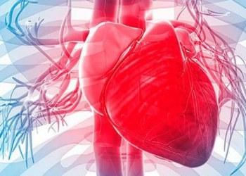 Enfermedades cardiovasculares, primer causa de muerte a nivel mundial 1