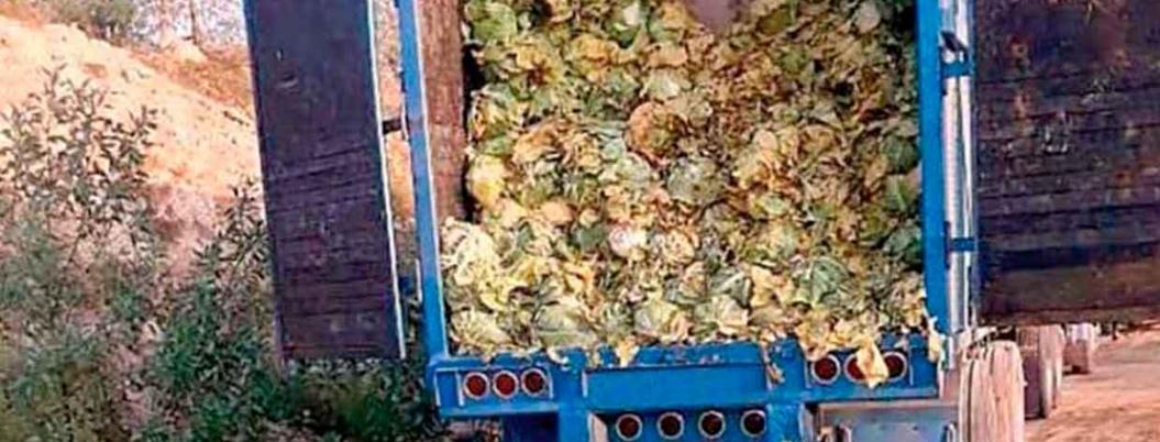 Descubren hidrocarburo robado en camión de lechuga en Hidalgo