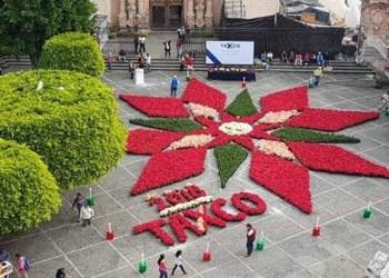 Instalan tapete de Nochebuena en la Plaza Borda de Taxco 1