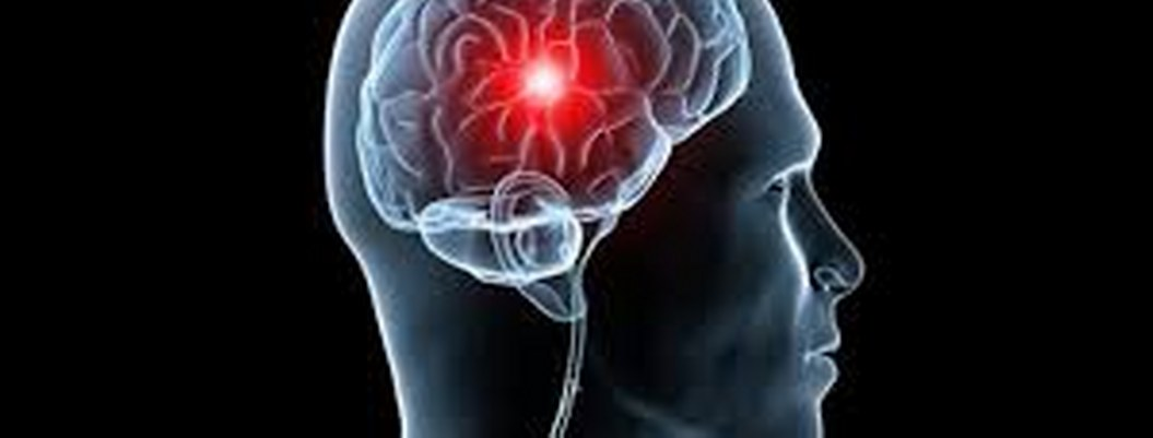 Estudio revela la reacción del cerebro a las cosas que causan miedo