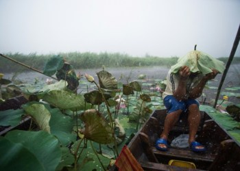 Miles de turistas huyen de tormenta tropical en Tailandia 4