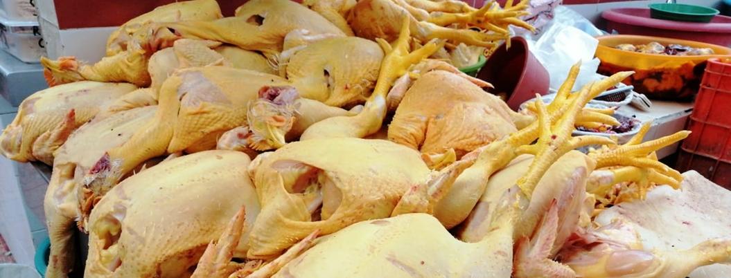 Abasto de pollo en el país está garantizado, asegura López Obrador