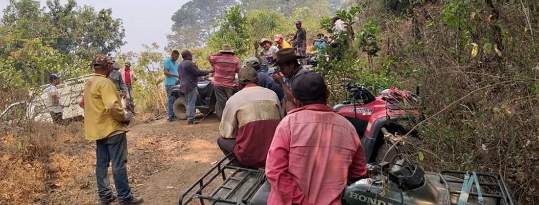 Incendios destruyeron hábitat del jaguar en sierra de Tecpan, Guerrero