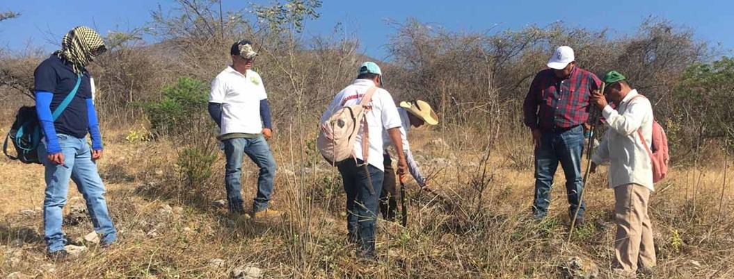 """""""AMLO miente sobre cifras de desaparecidos"""", critican organizaciones"""