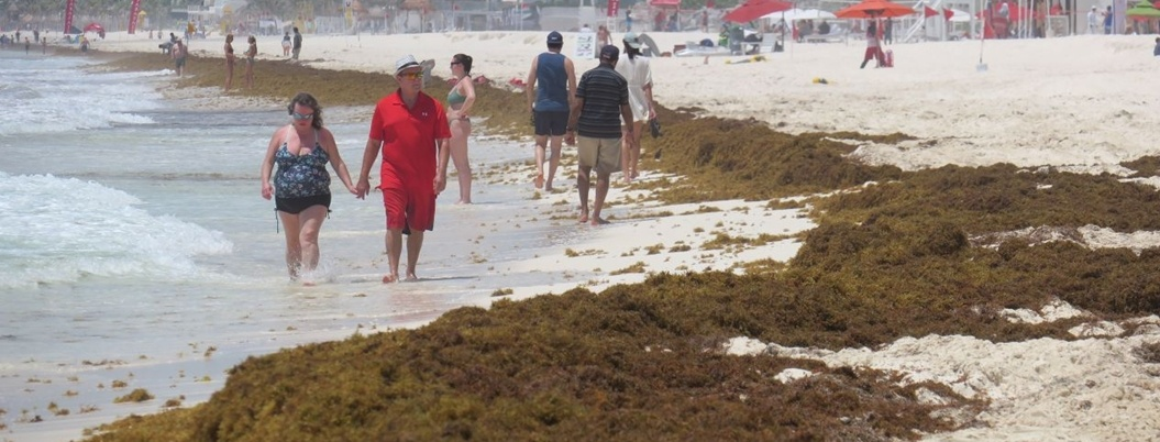 Turistas de EU visitan Cancún a pesar del sargazo
