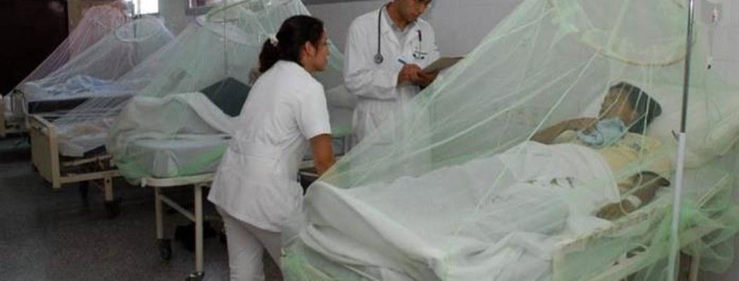 Honduras suma 40 muertos en 2 semanas a causa del dengue