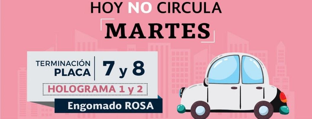 Martes no circulan autos con engomado rosa y placas 7 y 8