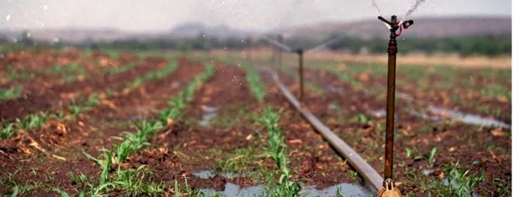 México puede convertirse en potencia de producción de alimentos