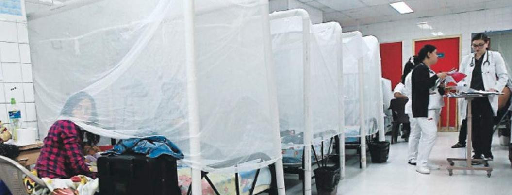Epidemia de dengue ya mató a 51 personas en Honduras