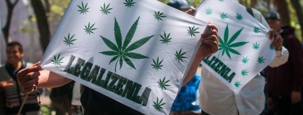 México podría copiar estos modelos para legalizar la mariguana