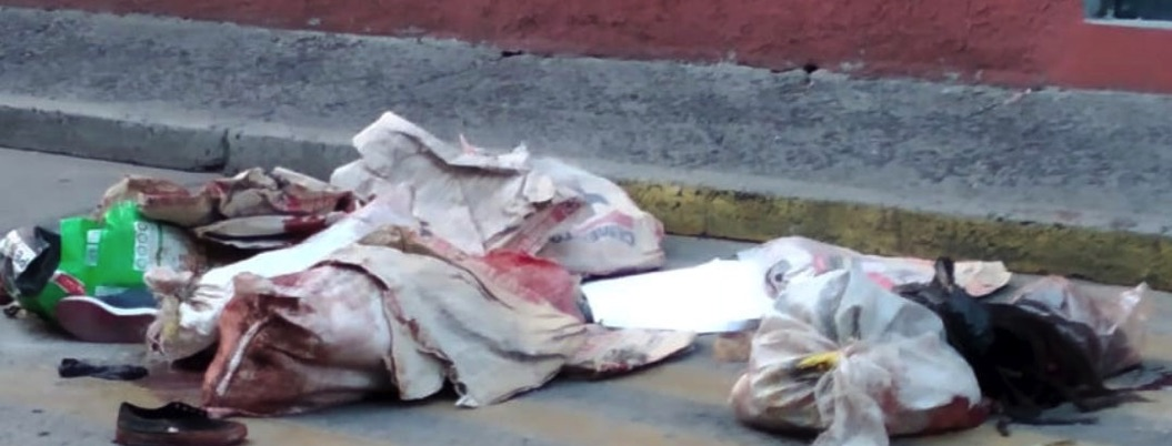 Localizan restos de siete personas desmembradas en Silao y Acámbaro