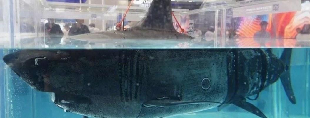 China diseña drones submarinos en forma de tiburón