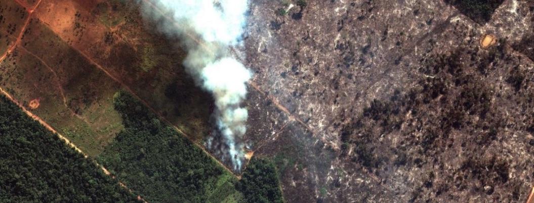 Capitalismo, verdadera causa de los incendios en el Amazonas