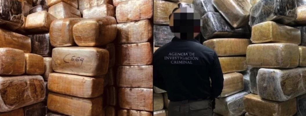 FGR da fuerte golpe al narcotráfico: decomisa 9 toneladas de marihuana