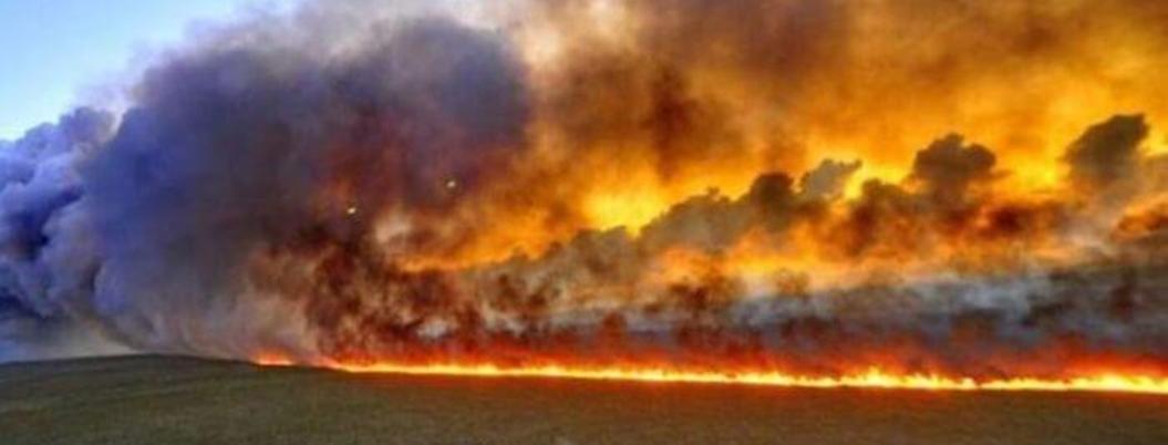 Incendios en la Amazonía brasileña impactarán en sector agropecuario