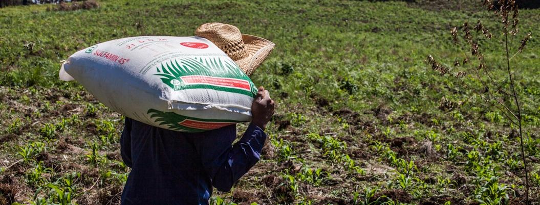 Sader apoyó a 242 mil 188 campesinos con fertilizante en Guerrero