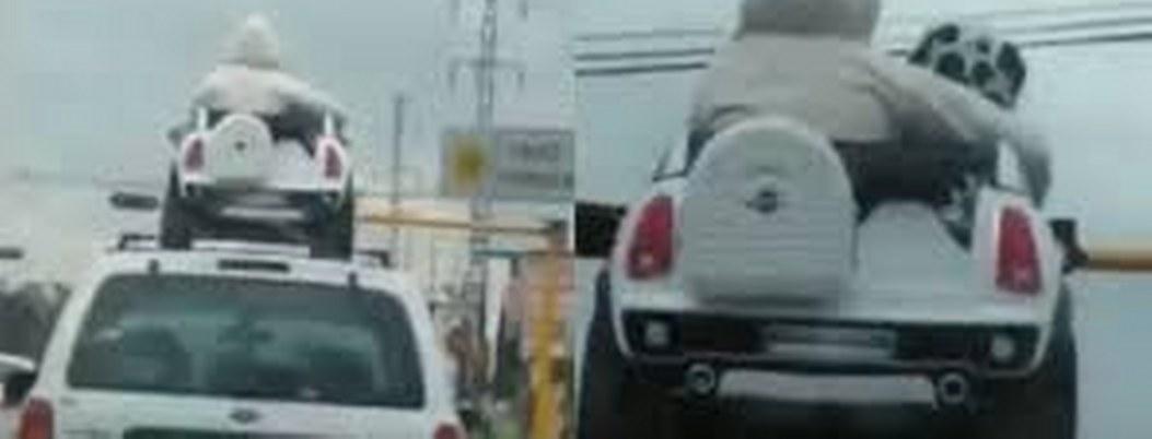 Niños viajan en toldo de una camioneta abordo de carrito de juguete