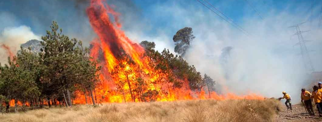 México no tiene políticas para prevenir incendios forestales