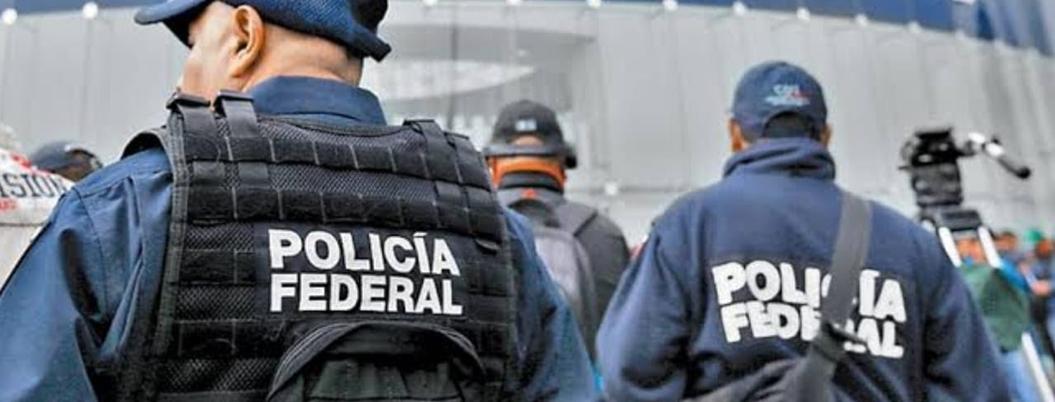 Hay riesgo de que policías federales cesados se vuelvan criminales