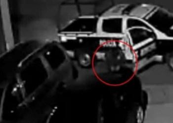 Video delata a policías ratas robando autopartes en Edomex | VIDEO 5