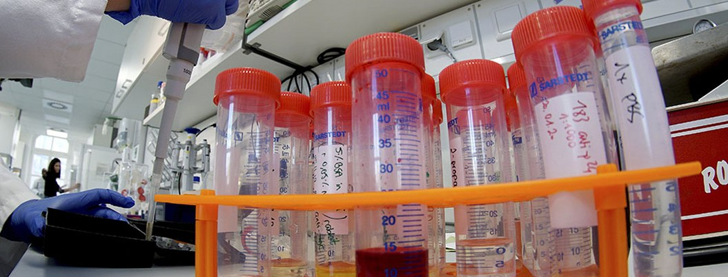 Profesor del IPN, posible portador del coronavirus en México
