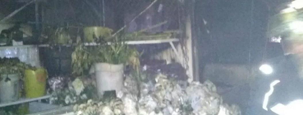 Incendio arrasó con 12 locales del Mercado de Xochimilco