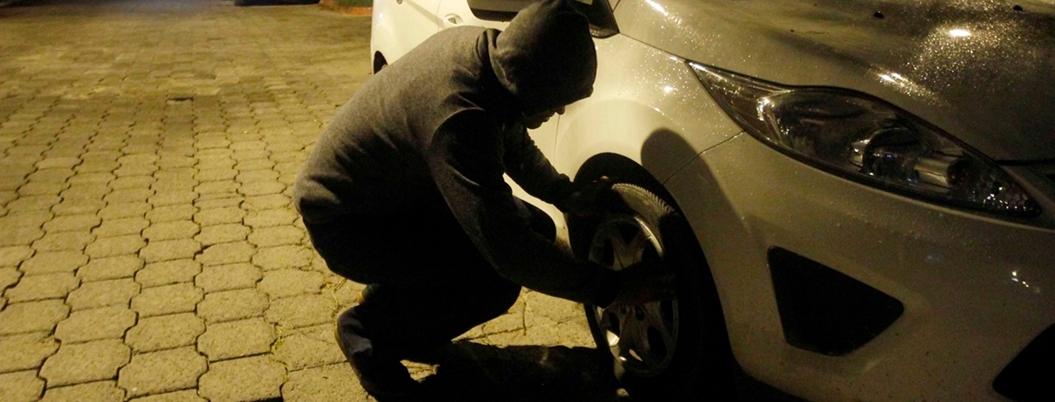 Roban 230 automóviles al día en el país