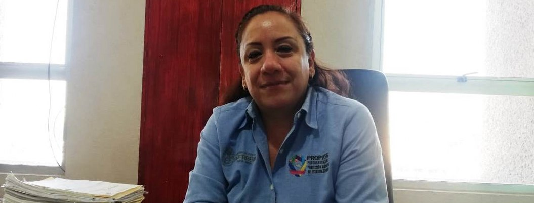Municipios de Guerrero con basureros fuera de la ley
