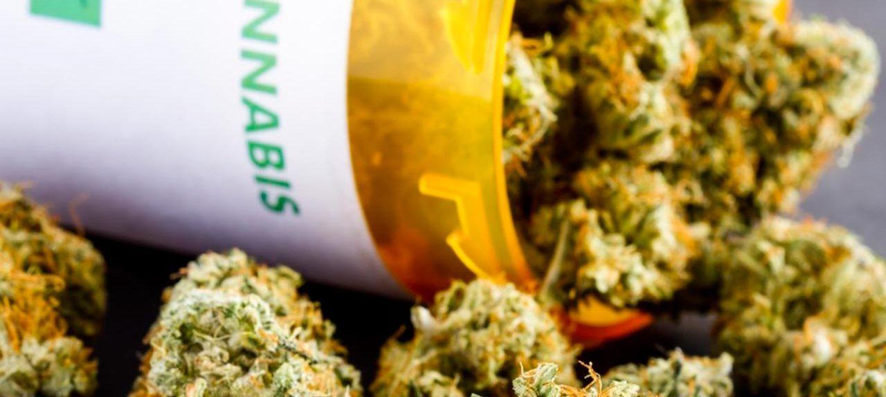 Especialistas piden regulación adecuada para la marihuana medicinal