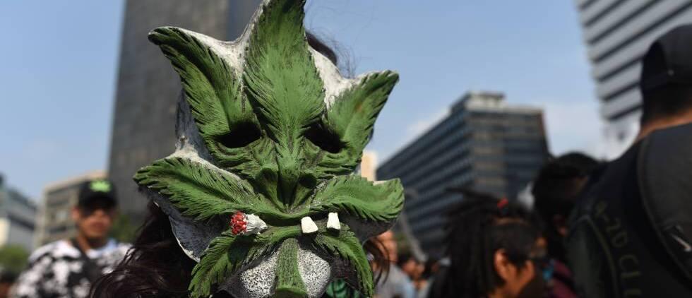 Mitad de los mexicanos aprueba legalizar la marihuana