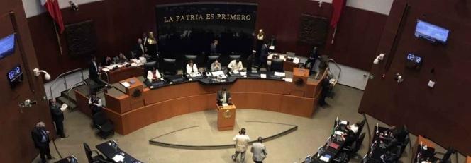 PVEM pide a AMLO programa de estímulos económicos para Pymes