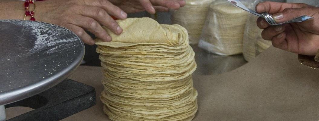 PROFECO: no hay justificación para alza en precio de la tortilla