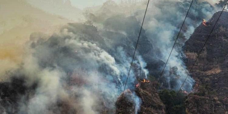 Liberan a joven que provocó incendio en Tepoztlán por grabar un TikTok 1