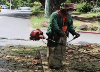 Tras semanas en el olvido, Cuernavaca reanuda mantenimiento de camellones 6