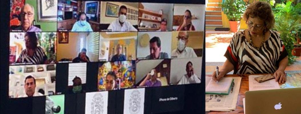 Videoconferencia del 13 de junio