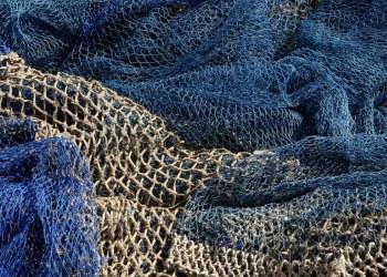 Agricultura presenta Plan de Manejo Pesquero para captura de atún aleta azul 4