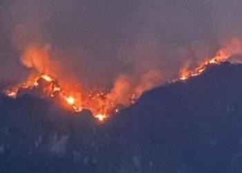 Incendio consume el cerro del Barrio de Santo Domingo, Tepoztlán 5